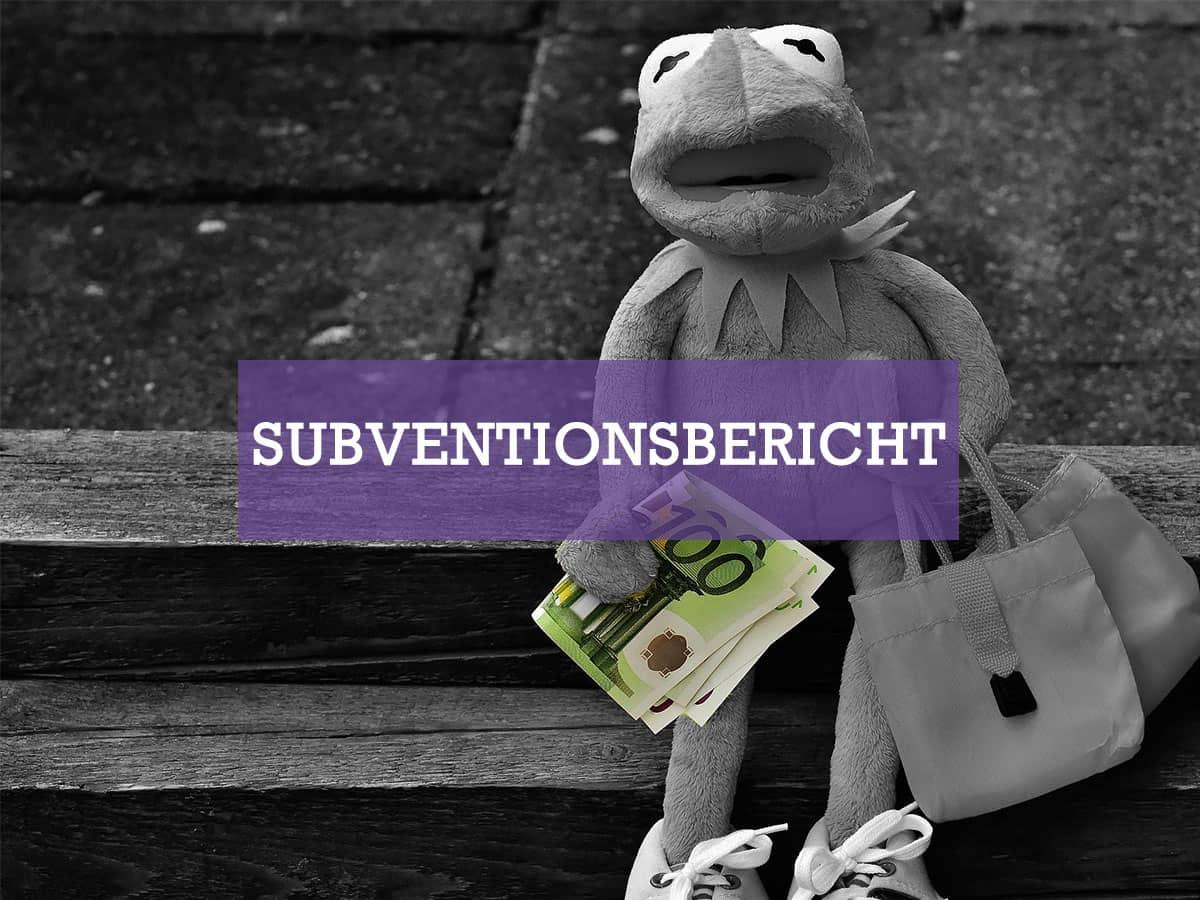 Subventionsbericht 2015