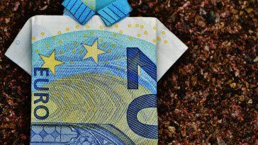 Tanja Wehsely Transparenzversuch bei Subventionsantrag
