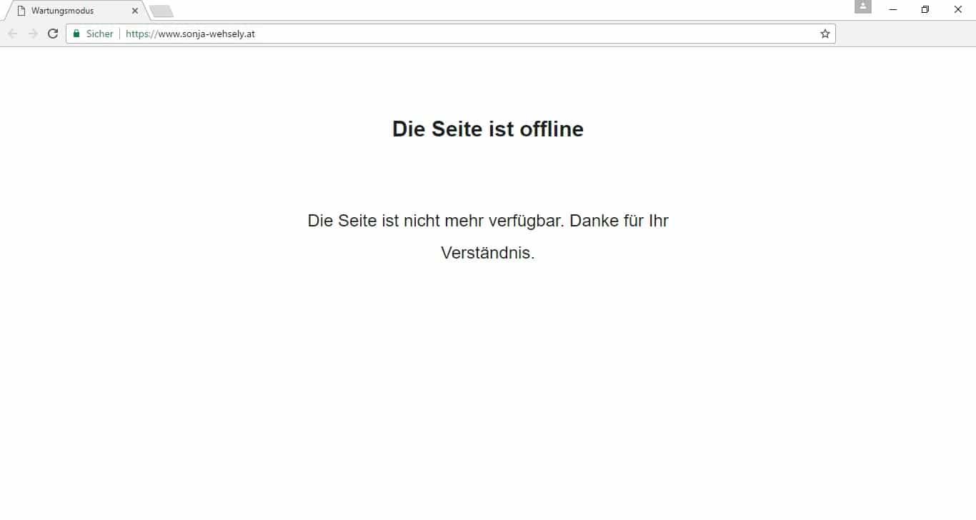 Sonja Wehsely - Screenshot Webseite