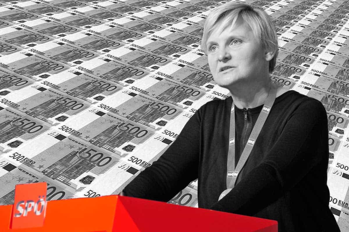 313 Millionen Euro - Sandra -Frauenberger -Foto Johannes Zinner