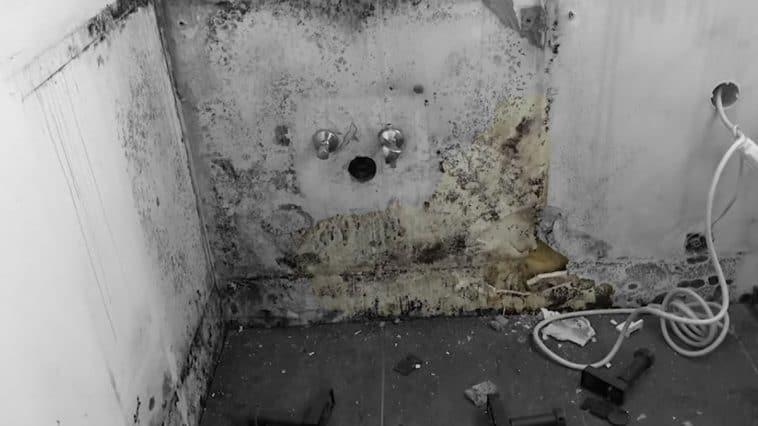 Verwüstetes Asyl-Hotel - Screenshot krone.tv