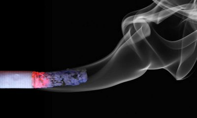 Türkis-Blau kippt absolutes Gastro-Rauchverbot