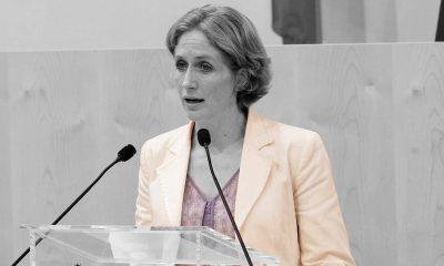 Stefanie Krisper - Parlamentsdirektion