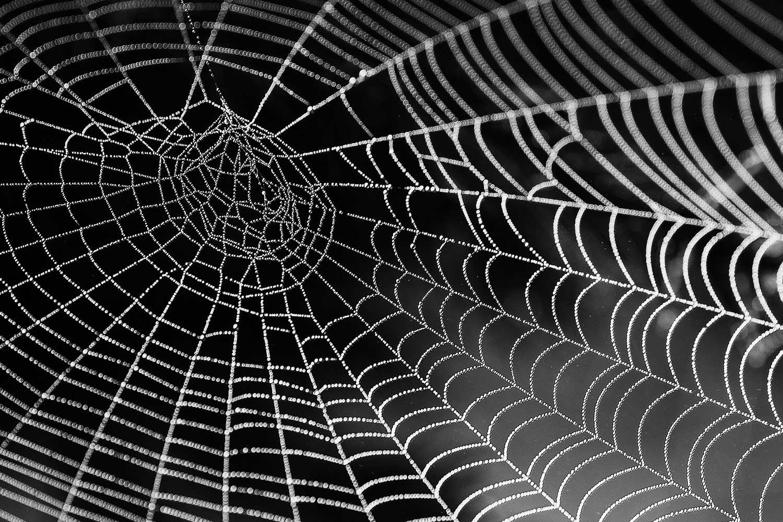 Sujetbild: ÖVP-Verbindungen zum Ibiza-Netzwerk? - Claudia Wollesen - Pixabay